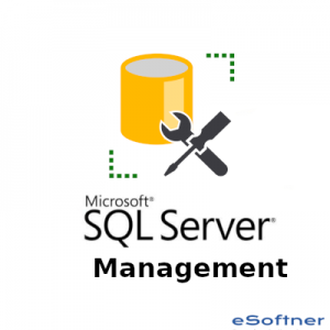 SQL Server Management Studio Logo
