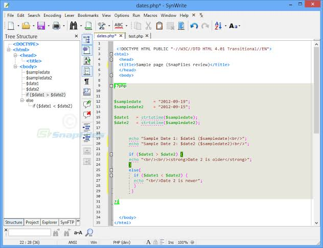 SynWrite Free Download