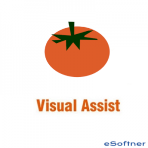 Visual Assist Logo