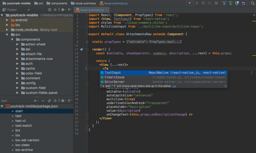 WebStorm Download