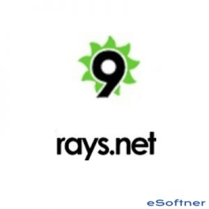 9Rays Spices.Net Suite Logo