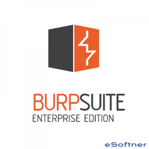 Burp Suite Professional Logo